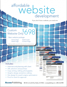 Web design flyer by Access Publishing