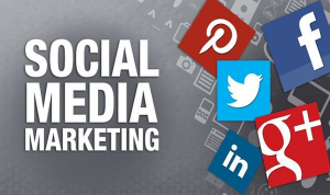 Social media marketing seminar hosted June 28
