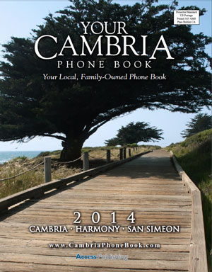 New publication reaches all of Cambria